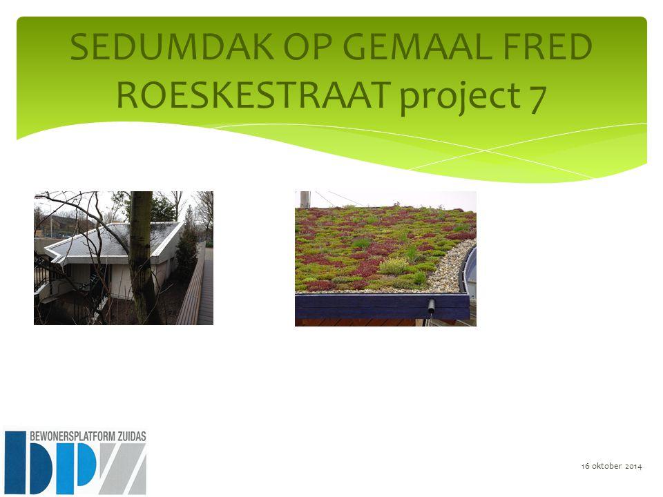SEDUMDAK OP GEMAAL FRED ROESKESTRAAT project 7 16 oktober 2014