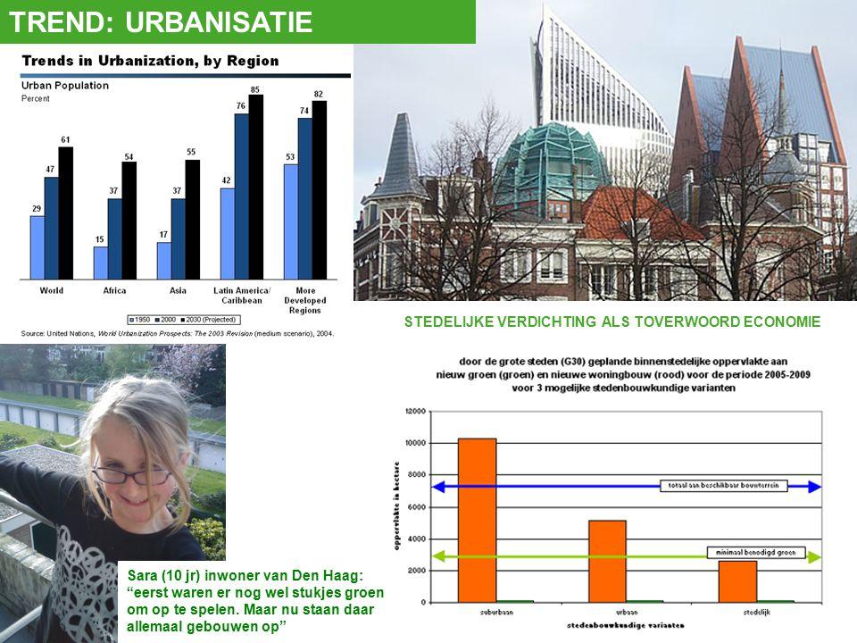 Sara (10 jr) inwoner van Den Haag: eerst waren er nog wel stukjes groen om op te spelen.