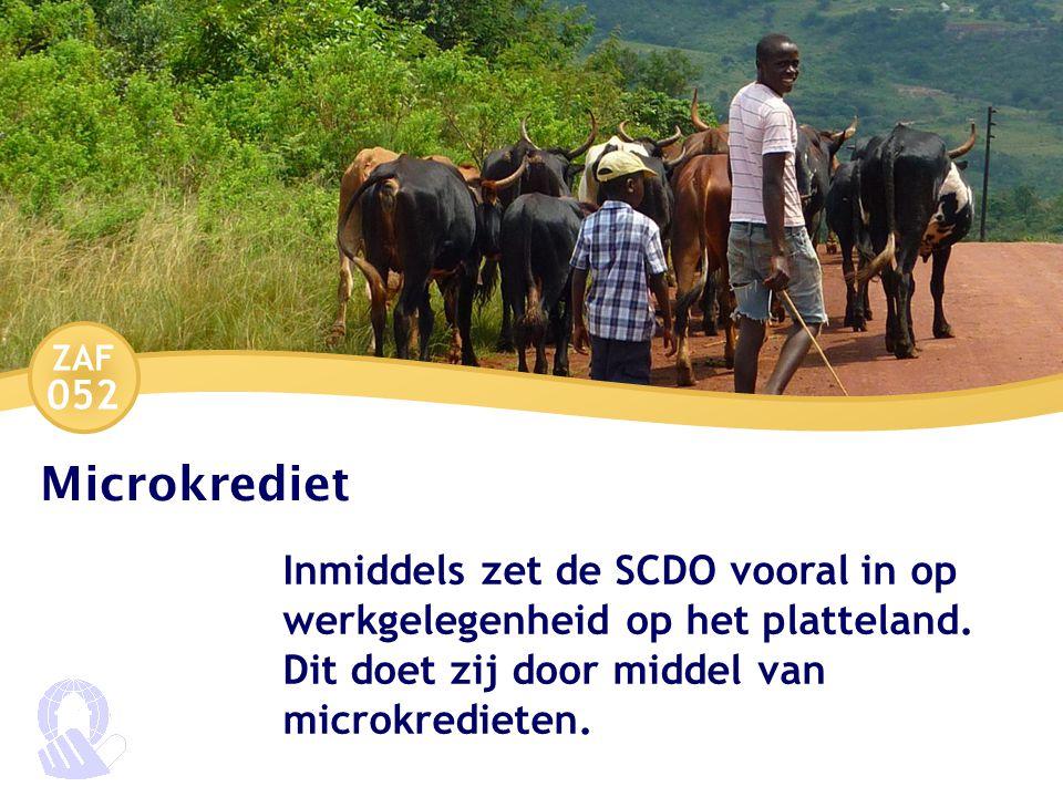 ZAF 052 Microkrediet Inmiddels zet de SCDO vooral in op werkgelegenheid op het platteland.