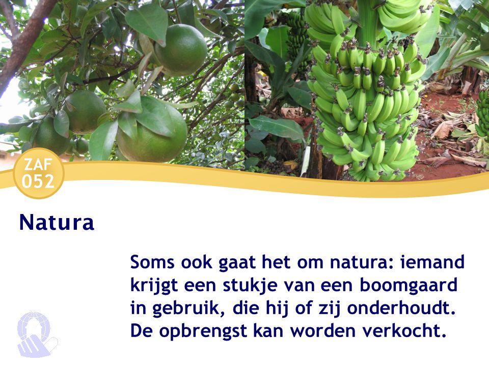 ZAF 052 Natura Soms ook gaat het om natura: iemand krijgt een stukje van een boomgaard in gebruik, die hij of zij onderhoudt.