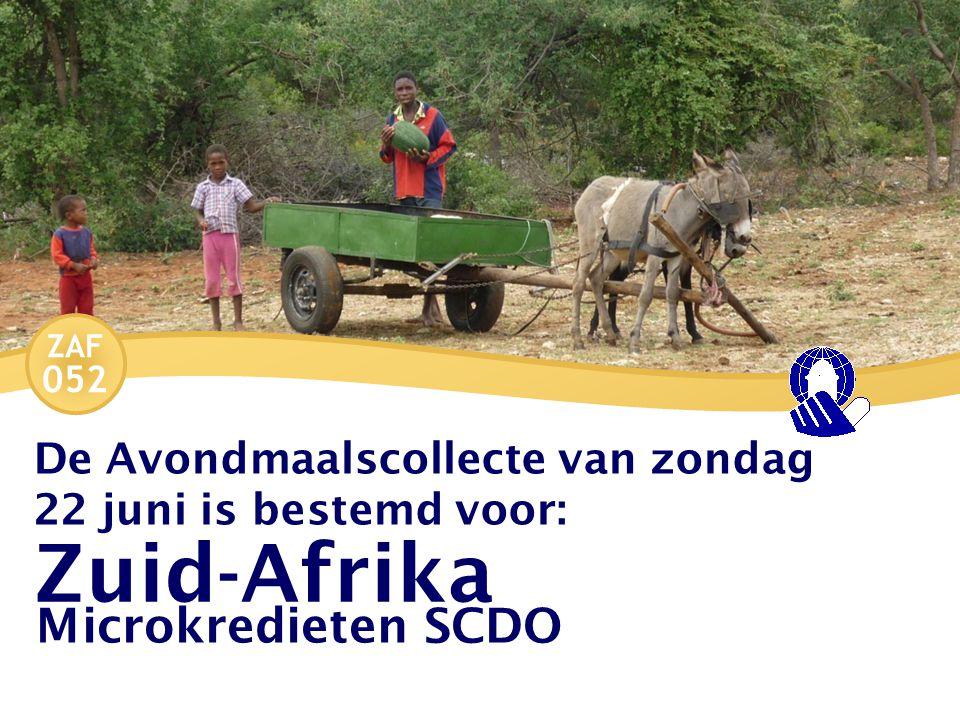 ZAF 052 Het begin De stichting SCDO is ontstaan uit de samenwerking van kerken voor noodhulp na een grote overstroming in het jaar 2000.