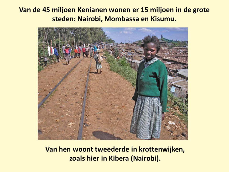Van de 45 miljoen Kenianen wonen er 15 miljoen in de grote steden: Nairobi, Mombassa en Kisumu. Van hen woont tweederde in krottenwijken, zoals hier i