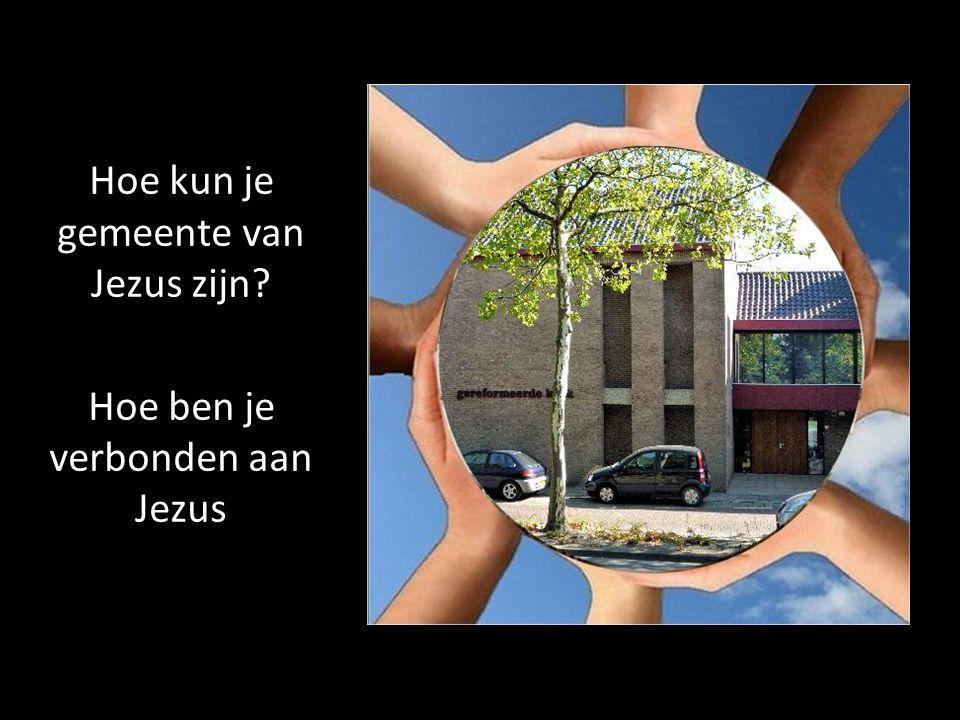 Hoe ben je verbonden aan Jezus