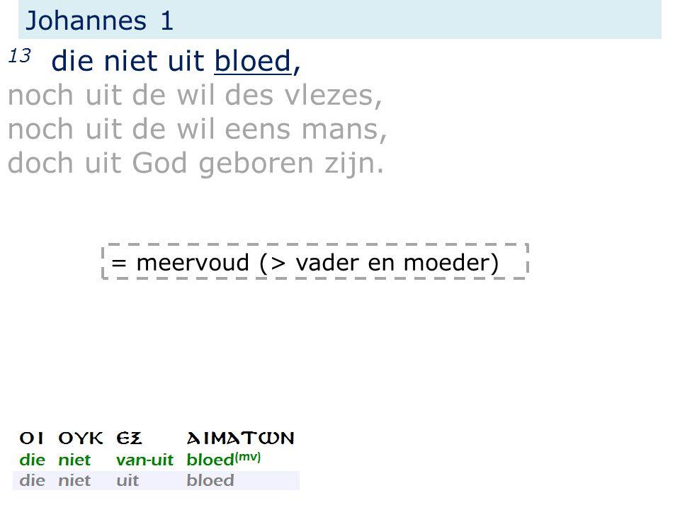 Johannes 1 13 die niet uit bloed, noch uit de wil des vlezes, noch uit de wil eens mans, doch uit God geboren zijn.