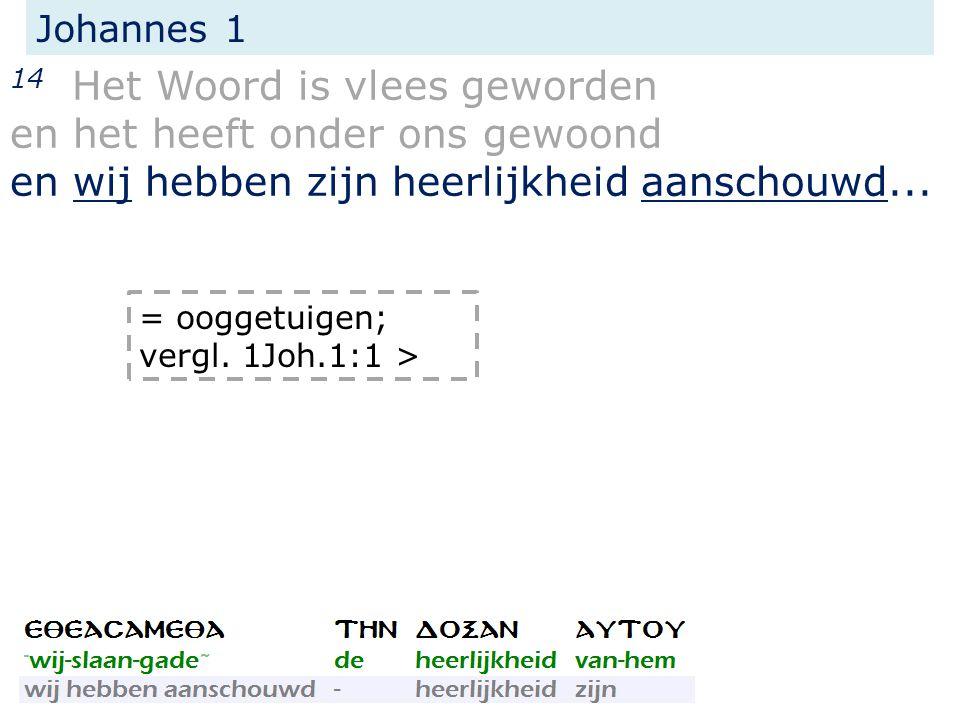Johannes 1 14 Het Woord is vlees geworden en het heeft onder ons gewoond en wij hebben zijn heerlijkheid aanschouwd...