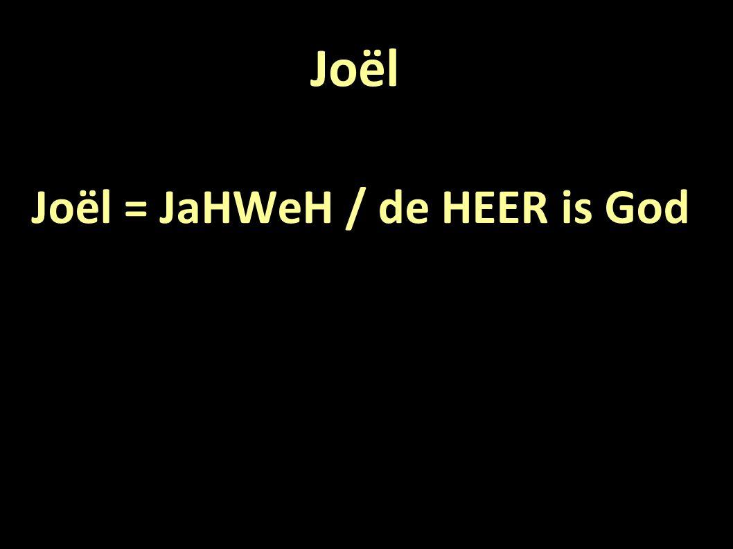 Joël Joël = JaHWeH / de HEER is God