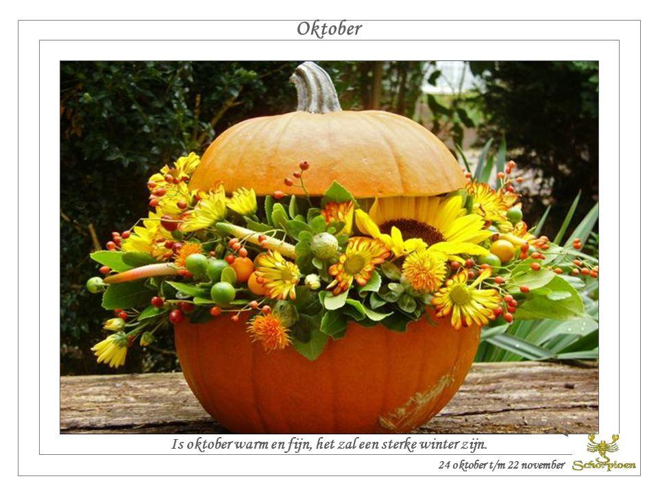 Septemberregen, komt zaad en wijnstok wel gelegen. September 24 september t/m 23 oktober