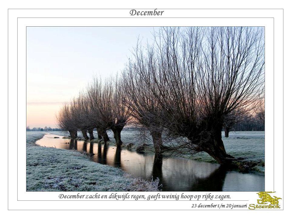 November November telt dertig dagen, maar het dubbele aan wind en regen. 23 november t/m 22 december