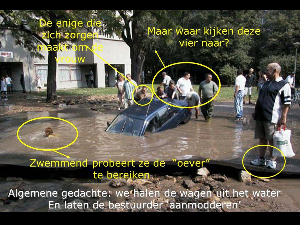 Algemene gedachte: we halen de wagen uit het water En laten de bestuurder 'aanmodderen' Zwemmend probeert ze de oever te bereiken Maar waar kijken deze vier naar.