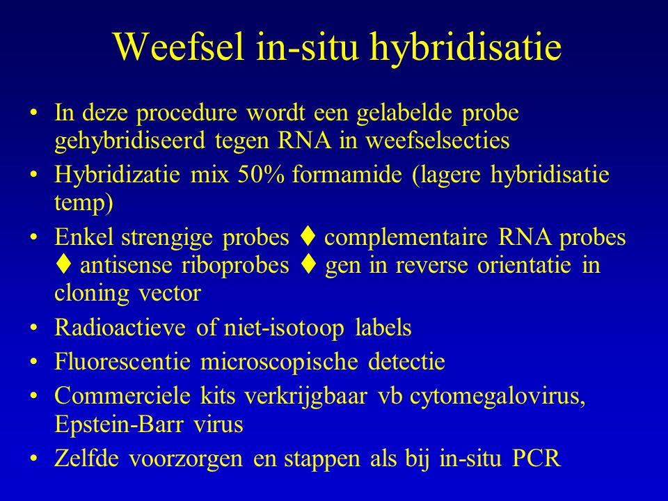 Weefsel in-situ hybridisatie In deze procedure wordt een gelabelde probe gehybridiseerd tegen RNA in weefselsecties Hybridizatie mix 50% formamide (lagere hybridisatie temp) Enkel strengige probes  complementaire RNA probes  antisense riboprobes  gen in reverse orientatie in cloning vector Radioactieve of niet-isotoop labels Fluorescentie microscopische detectie Commerciele kits verkrijgbaar vb cytomegalovirus, Epstein-Barr virus Zelfde voorzorgen en stappen als bij in-situ PCR
