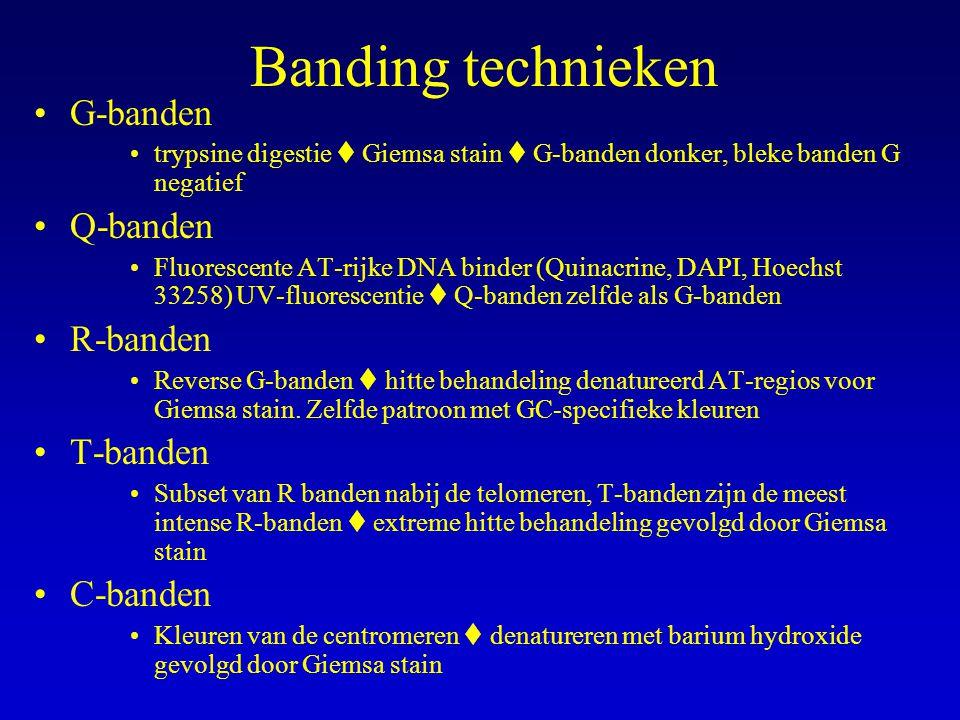 Banding technieken G-banden trypsine digestie  Giemsa stain  G-banden donker, bleke banden G negatief Q-banden Fluorescente AT-rijke DNA binder (Quinacrine, DAPI, Hoechst 33258) UV-fluorescentie  Q-banden zelfde als G-banden R-banden Reverse G-banden  hitte behandeling denatureerd AT-regios voor Giemsa stain.