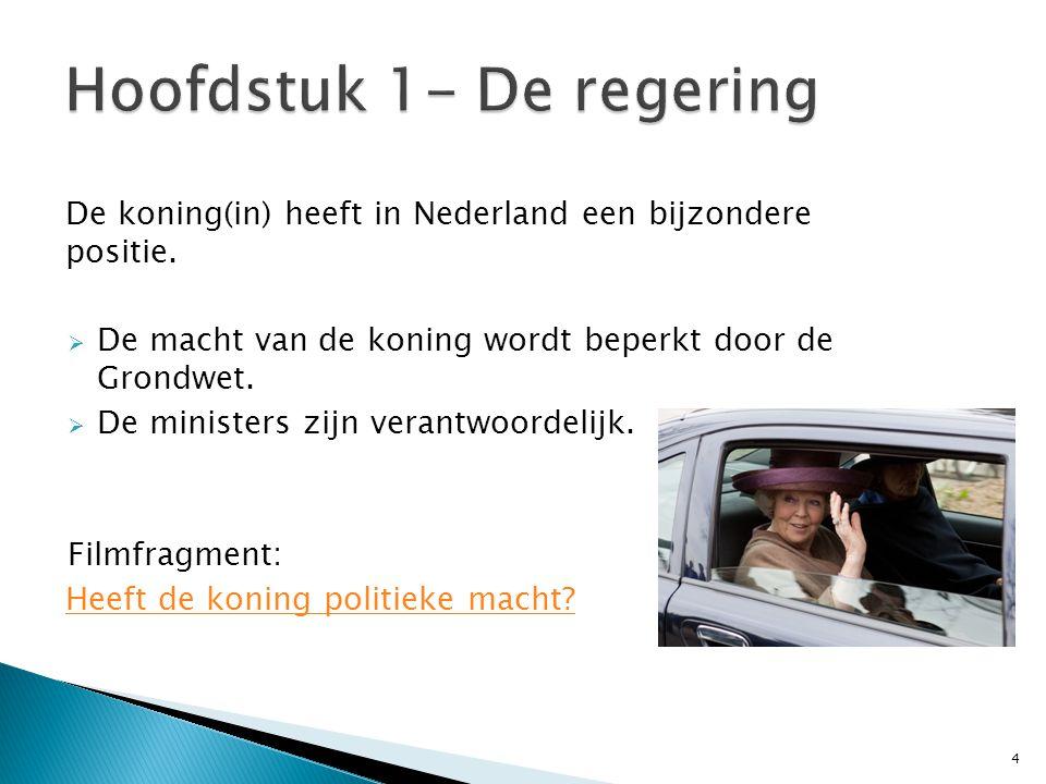 De koning(in) heeft in Nederland een bijzondere positie.