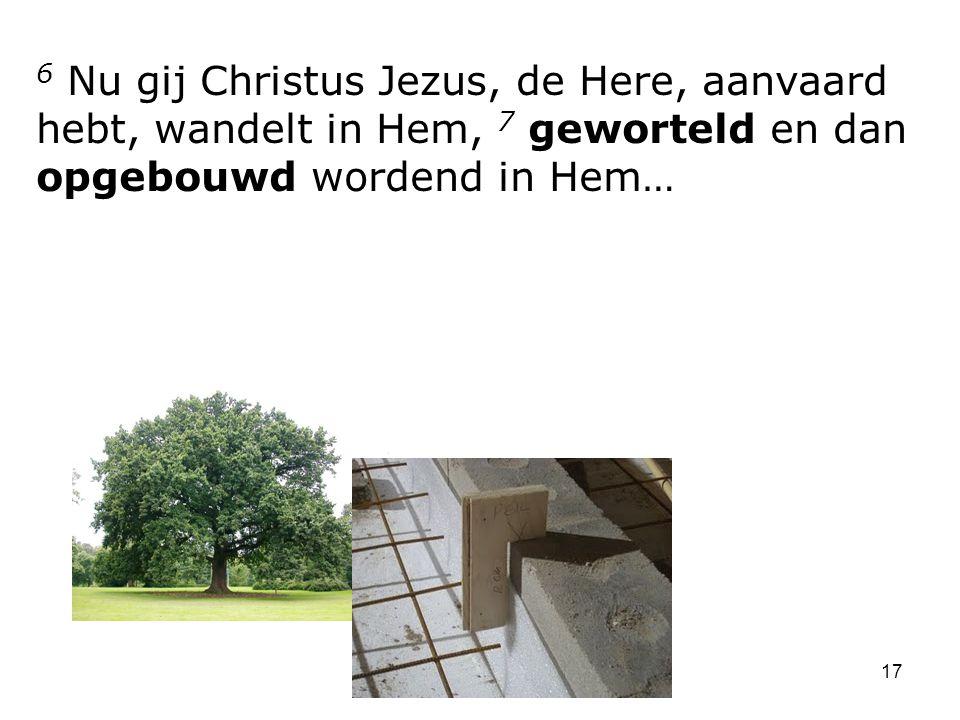 17 6 Nu gij Christus Jezus, de Here, aanvaard hebt, wandelt in Hem, 7 geworteld en dan opgebouwd wordend in Hem…