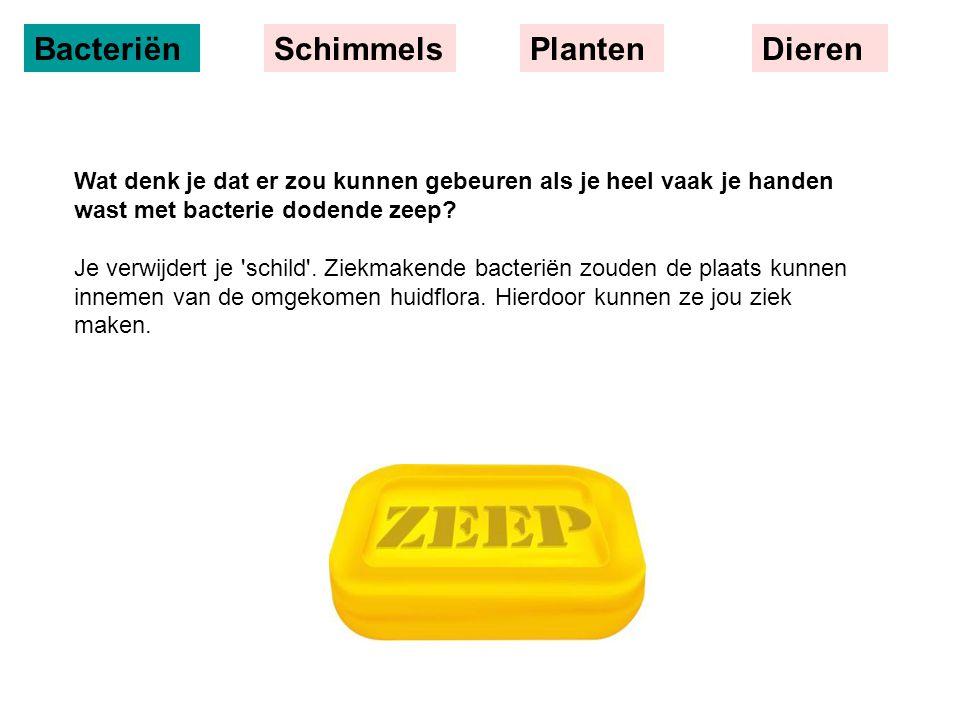 BacteriënSchimmelsPlantenDieren Wat denk je dat er zou kunnen gebeuren als je heel vaak je handen wast met bacterie dodende zeep? Je verwijdert je 'sc