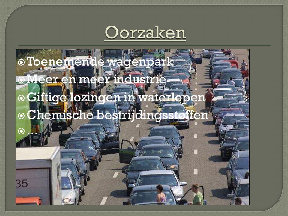  Toenemende wagenpark  Meer en meer industrie  Giftige lozingen in waterlopen  Chemische bestrijdingsstoffen ...