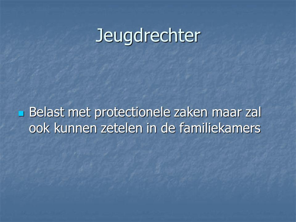 Jeugdrechter Belast met protectionele zaken maar zal ook kunnen zetelen in de familiekamers Belast met protectionele zaken maar zal ook kunnen zetelen