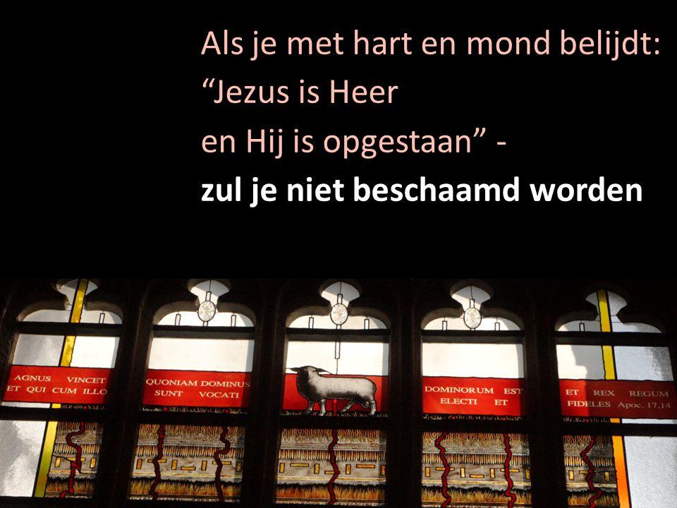 """Als je met hart en mond belijdt: """"Jezus is Heer en Hij is opgestaan"""" - zul je niet beschaamd worden"""