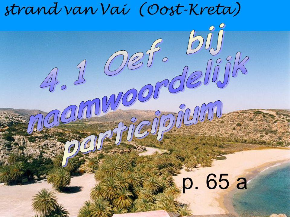 p. 65 a strand van Vai (Oost-Kreta)