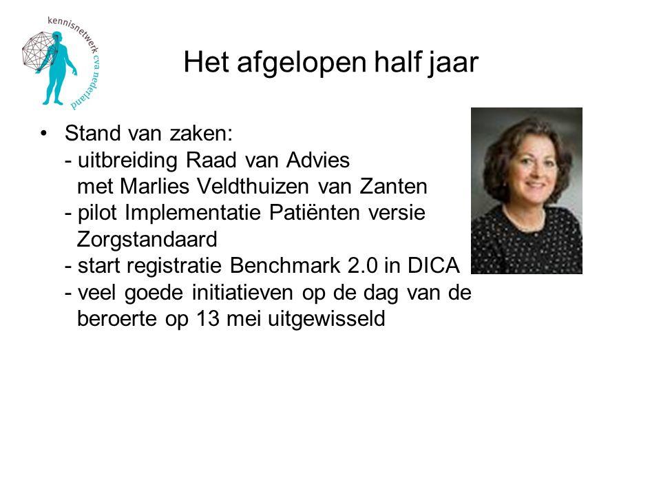 Het afgelopen half jaar Stand van zaken: - uitbreiding Raad van Advies met Marlies Veldthuizen van Zanten - pilot Implementatie Patiënten versie Zorgstandaard - start registratie Benchmark 2.0 in DICA - veel goede initiatieven op de dag van de beroerte op 13 mei uitgewisseld