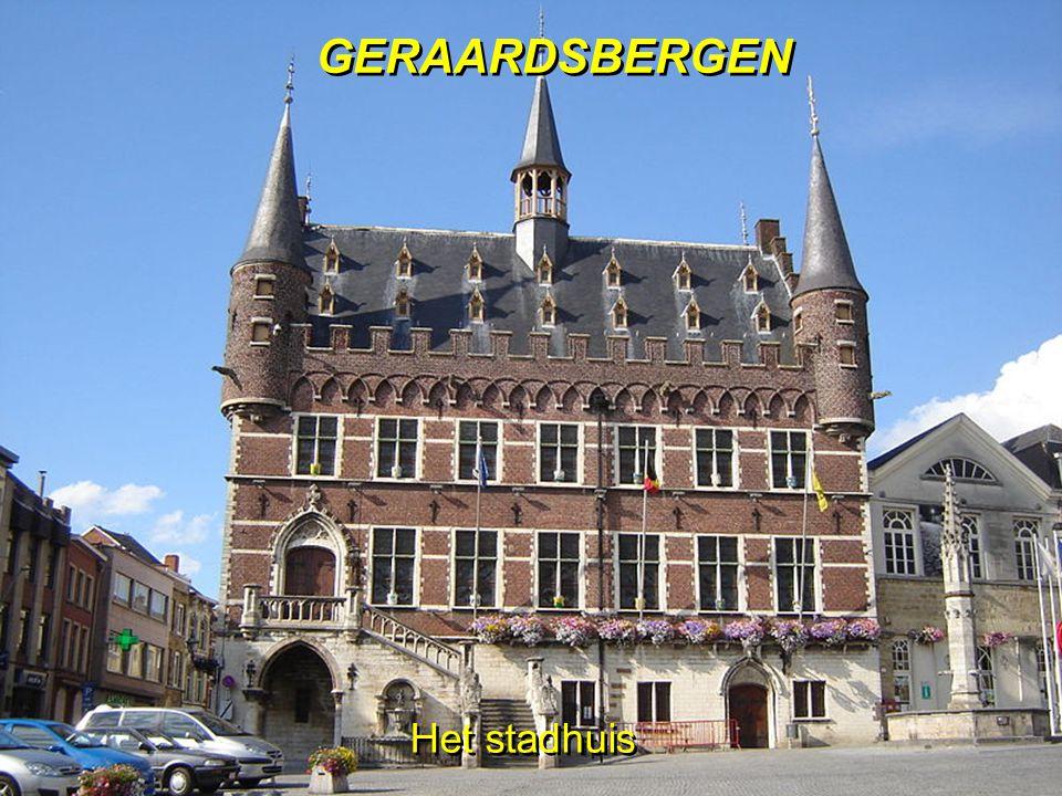 Het stadhuis GERAARDSBERGEN