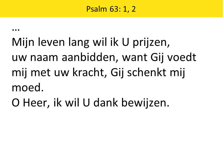 … Mijn leven lang wil ik U prijzen, uw naam aanbidden, want Gij voedt mij met uw kracht, Gij schenkt mij moed. O Heer, ik wil U dank bewijzen. Psalm 6