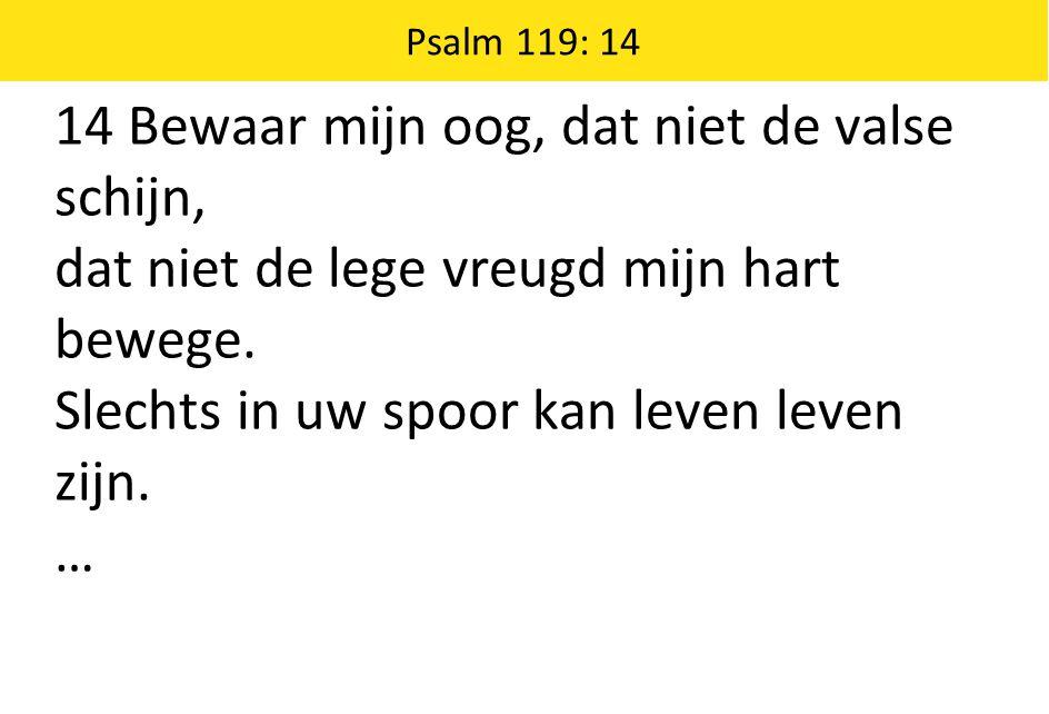 14 Bewaar mijn oog, dat niet de valse schijn, dat niet de lege vreugd mijn hart bewege. Slechts in uw spoor kan leven leven zijn. … Psalm 119: 14