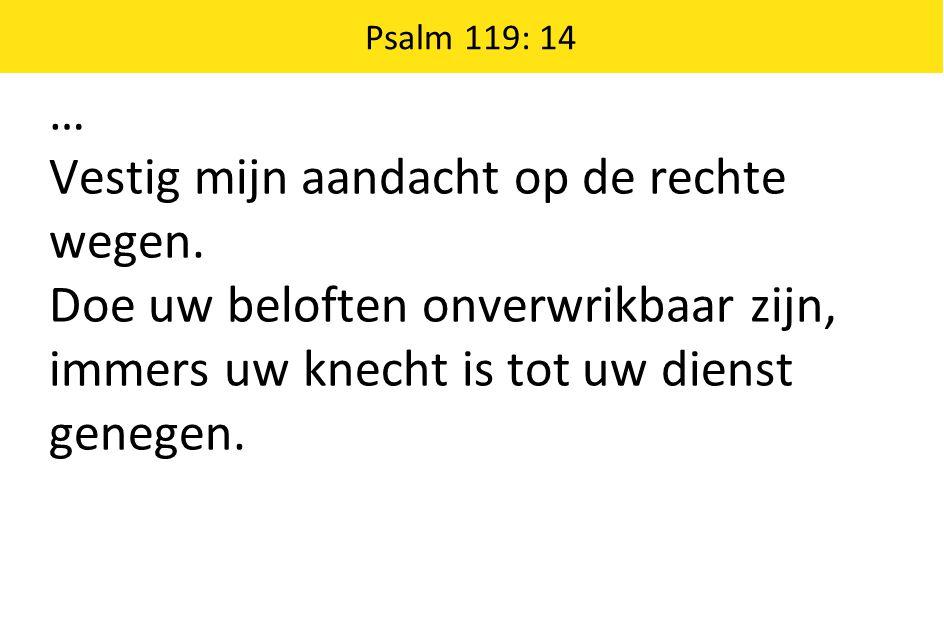 … Vestig mijn aandacht op de rechte wegen. Doe uw beloften onverwrikbaar zijn, immers uw knecht is tot uw dienst genegen. Psalm 119: 14