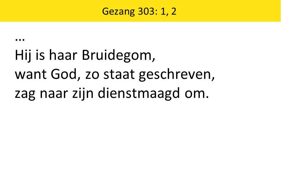 … Hij is haar Bruidegom, want God, zo staat geschreven, zag naar zijn dienstmaagd om. Gezang 303: 1, 2