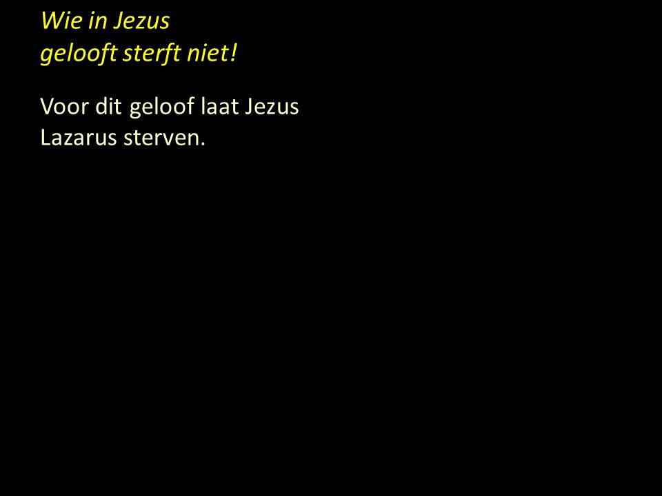 Wie in Jezus gelooft sterft niet! Voor dit geloof laat Jezus Lazarus sterven.