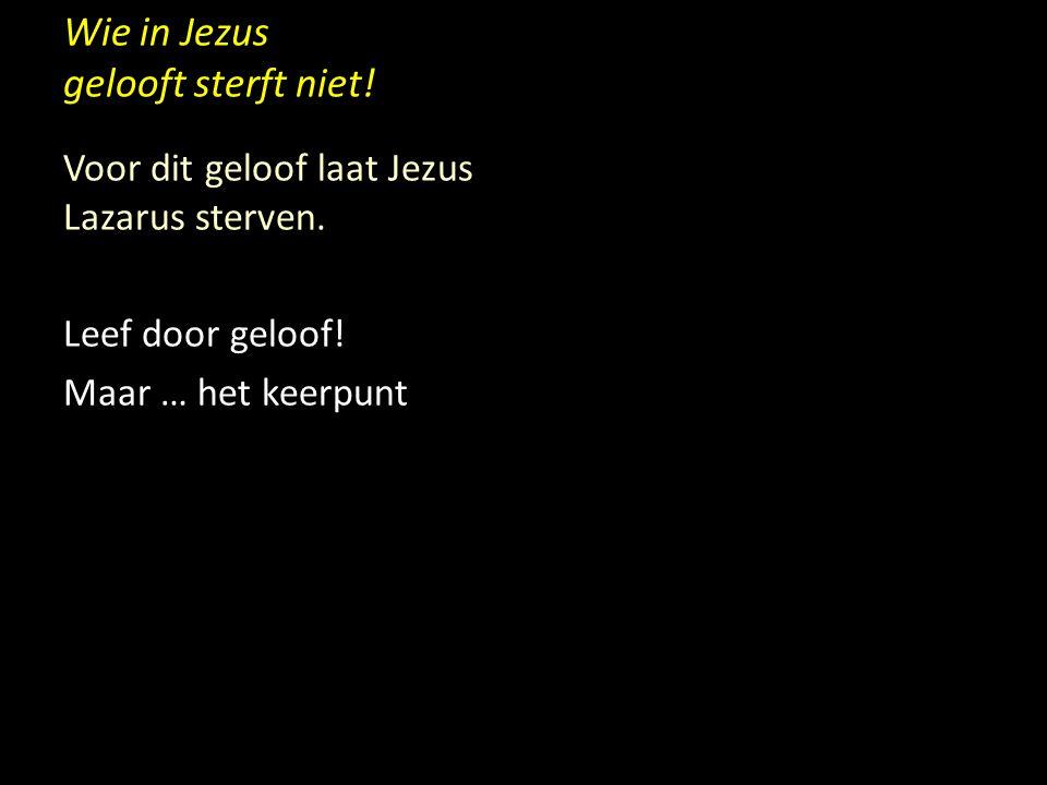 Wie in Jezus gelooft sterft niet! Voor dit geloof laat Jezus Lazarus sterven. Leef door geloof! Maar … het keerpunt