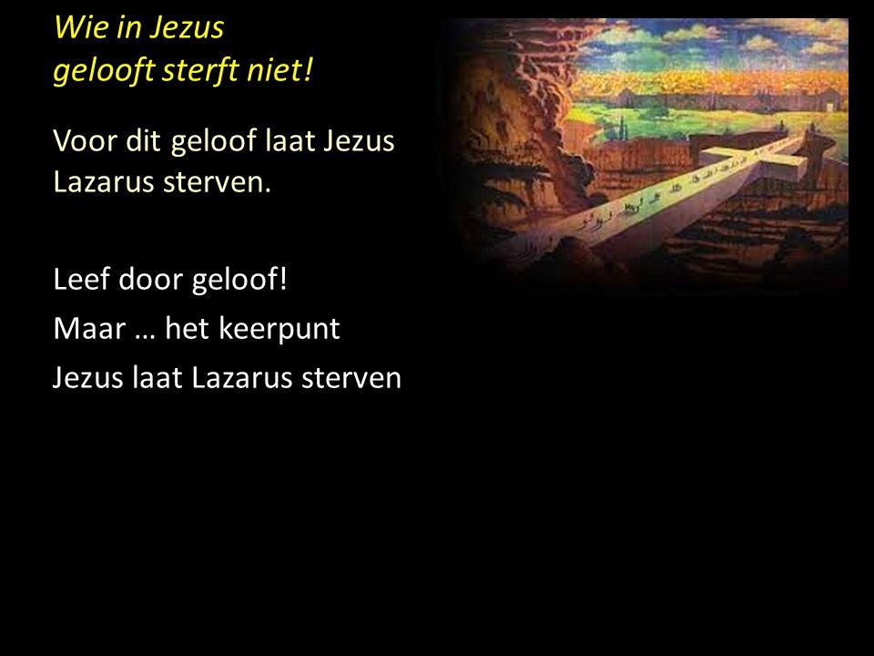 Wie in Jezus gelooft sterft niet! Voor dit geloof laat Jezus Lazarus sterven. Leef door geloof! Maar … het keerpunt Jezus laat Lazarus sterven
