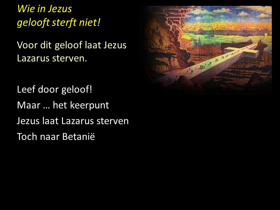 Wie in Jezus gelooft sterft niet! Voor dit geloof laat Jezus Lazarus sterven. Leef door geloof! Maar … het keerpunt Jezus laat Lazarus sterven Toch na