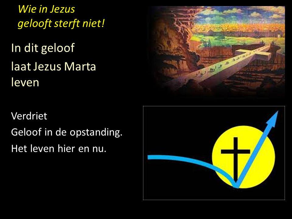 Wie in Jezus gelooft sterft niet! In dit geloof laat Jezus Marta leven Verdriet Geloof in de opstanding. Het leven hier en nu.