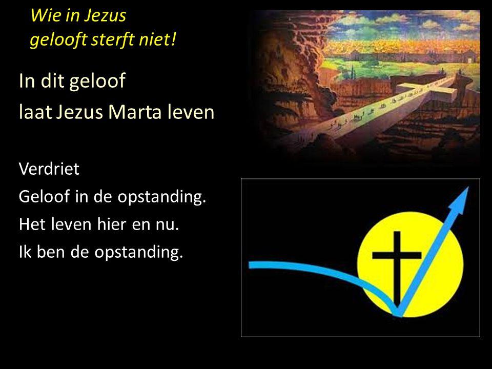 Wie in Jezus gelooft sterft niet! In dit geloof laat Jezus Marta leven Verdriet Geloof in de opstanding. Het leven hier en nu. Ik ben de opstanding.