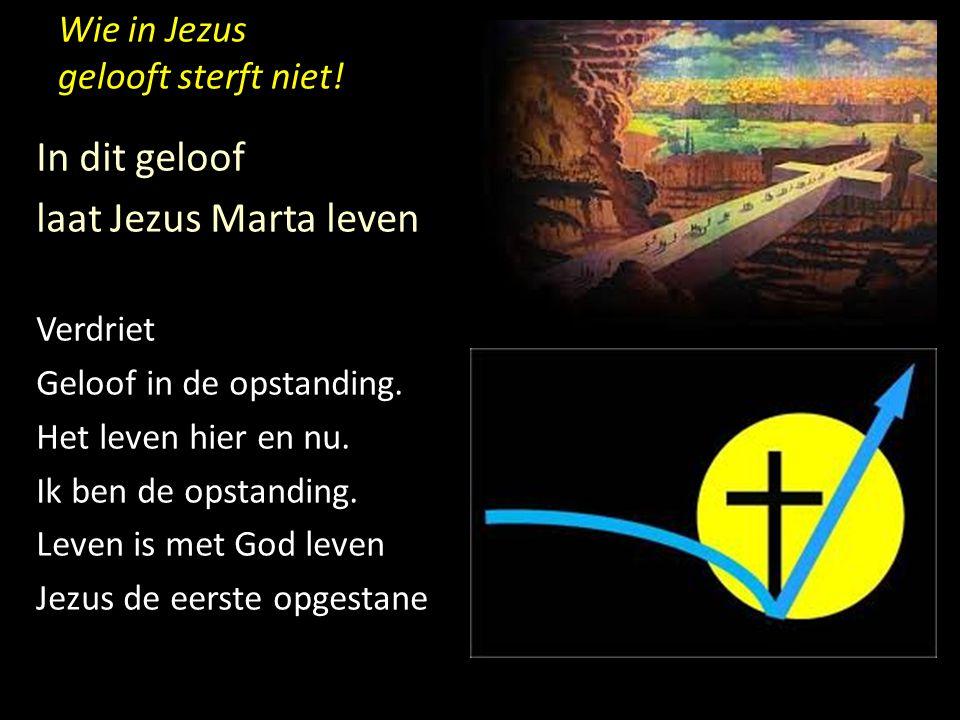 Wie in Jezus gelooft sterft niet! In dit geloof laat Jezus Marta leven Verdriet Geloof in de opstanding. Het leven hier en nu. Ik ben de opstanding. L