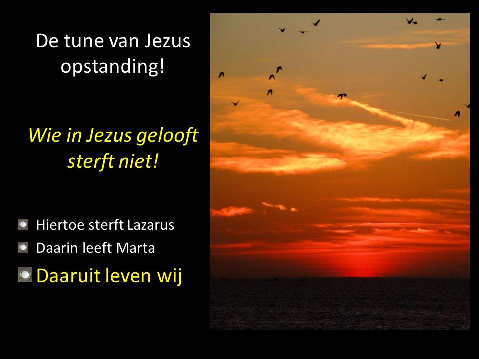 De tune van Jezus opstanding! Wie in Jezus gelooft sterft niet! Hiertoe sterft Lazarus Daarin leeft Marta Daaruit leven wij