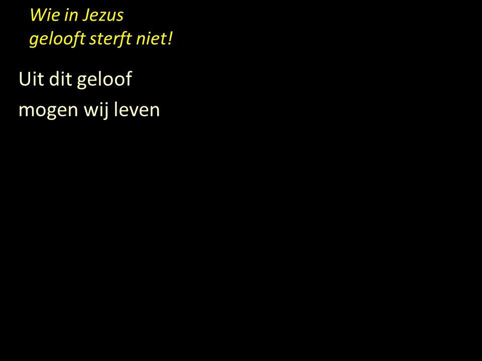 Wie in Jezus gelooft sterft niet! Uit dit geloof mogen wij leven