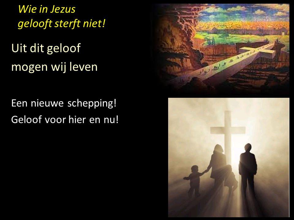 Wie in Jezus gelooft sterft niet! Uit dit geloof mogen wij leven Een nieuwe schepping! Geloof voor hier en nu!
