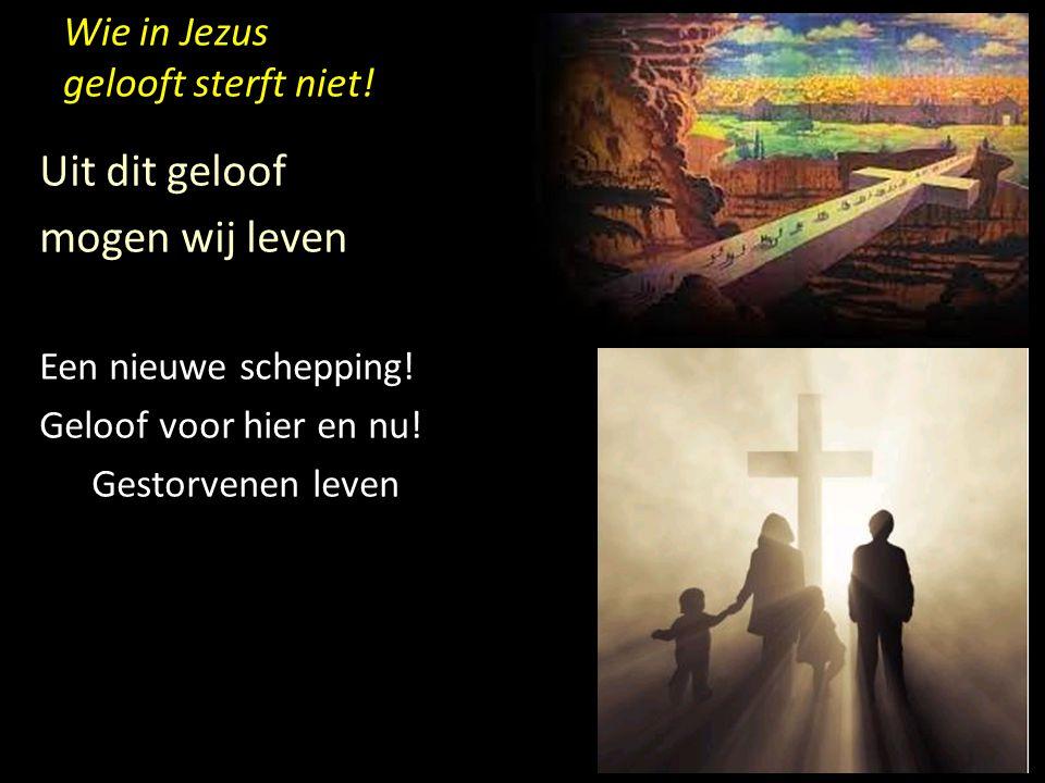 Wie in Jezus gelooft sterft niet! Uit dit geloof mogen wij leven Een nieuwe schepping! Geloof voor hier en nu! Gestorvenen leven