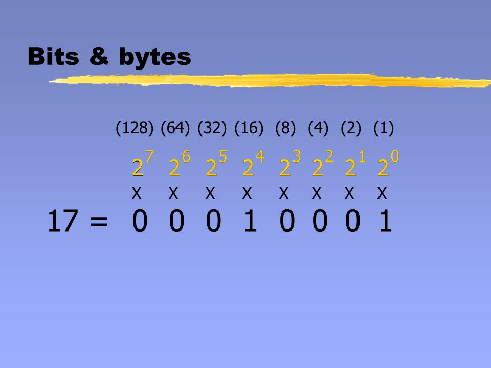 Bits & bytes (128)(64)(32)(16)(8)(4)(2)(1) 2 7 2 6 2 5 2 4 2 3 2 2 2 1 2 0 XXXXXXXX 2 7 2 6 2 5 2 4 2 3 2 2 2 1 2 0 013 =0001110
