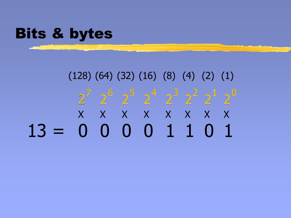 Bits & bytes (128)(64)(32)(16)(8)(4)(2)(1) 2 7 2 6 2 5 2 4 2 3 2 2 2 1 2 0 XXXXXXXX 2 7 2 6 2 5 2 4 2 3 2 2 2 1 2 0 1251=1111101