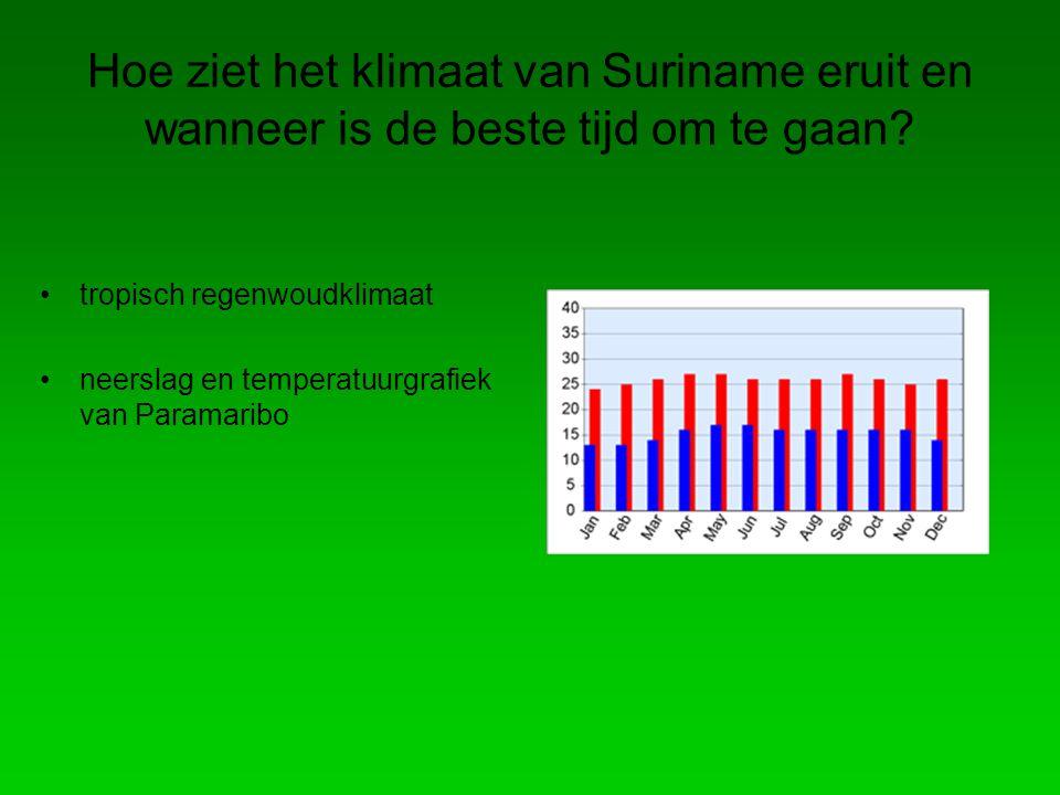 Hoe ziet het klimaat van Suriname eruit en wanneer is de beste tijd om te gaan.