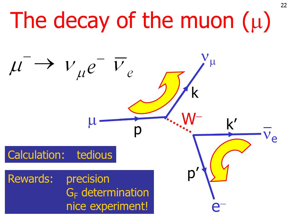 21 The decay of the muon