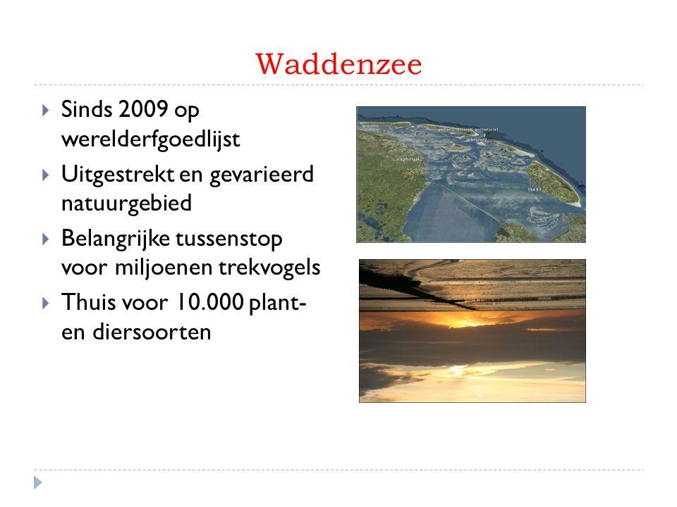 Grachtengordel Amsterdam  Sinds 2010 op werelderfgoedlijst  Onderdeel van de Amsterdamse binnenstad  Systeem van straten, kades, bruggen en woonhuizen  Belangrijke toeristische attractie van Amsterdam