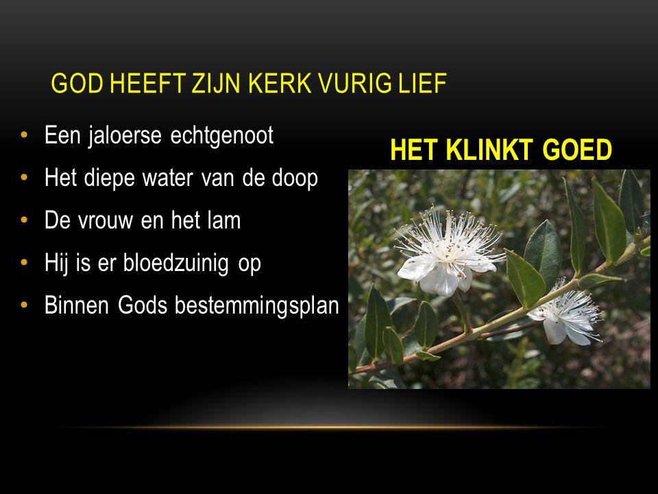 Een jaloerse echtgenoot Het diepe water van de doop De vrouw en het lam Hij is er bloedzuinig op Binnen Gods bestemmingsplan HET KLINKT GOED GOD HEEFT ZIJN KERK VURIG LIEF