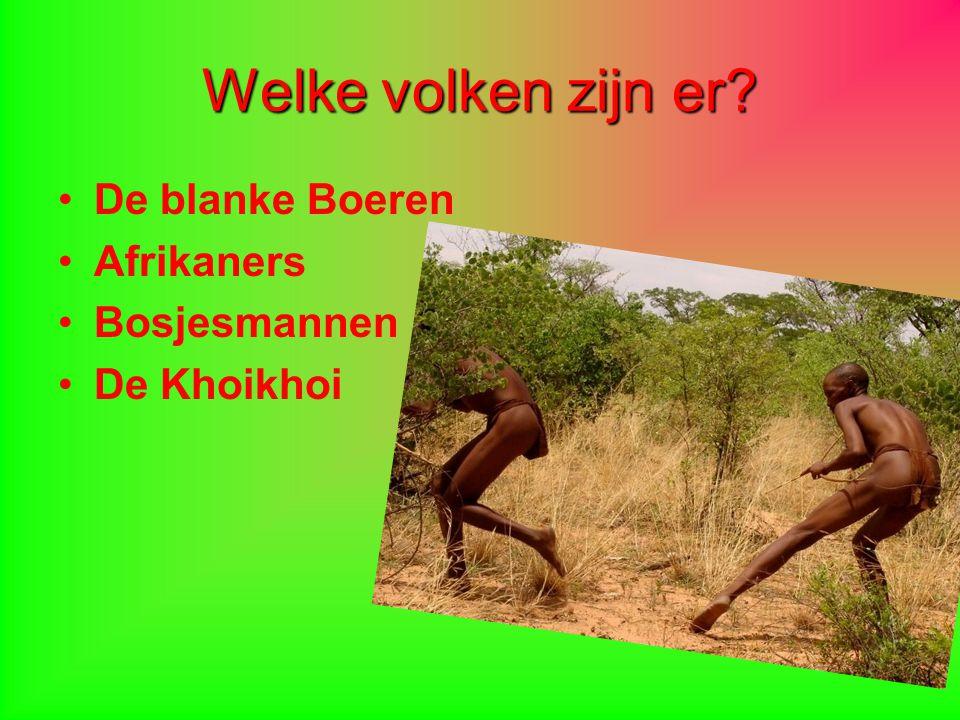 Welke volken zijn er? De blanke Boeren Afrikaners Bosjesmannen De Khoikhoi