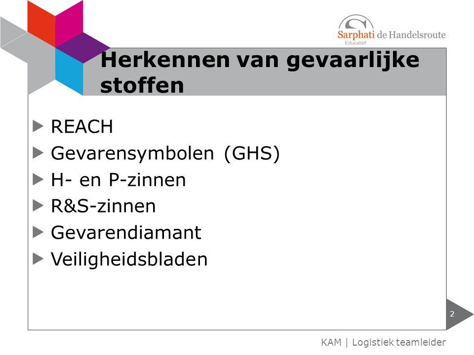 REACH Gevarensymbolen (GHS) H- en P-zinnen R&S-zinnen Gevarendiamant Veiligheidsbladen 2 KAM | Logistiek teamleider Herkennen van gevaarlijke stoffen