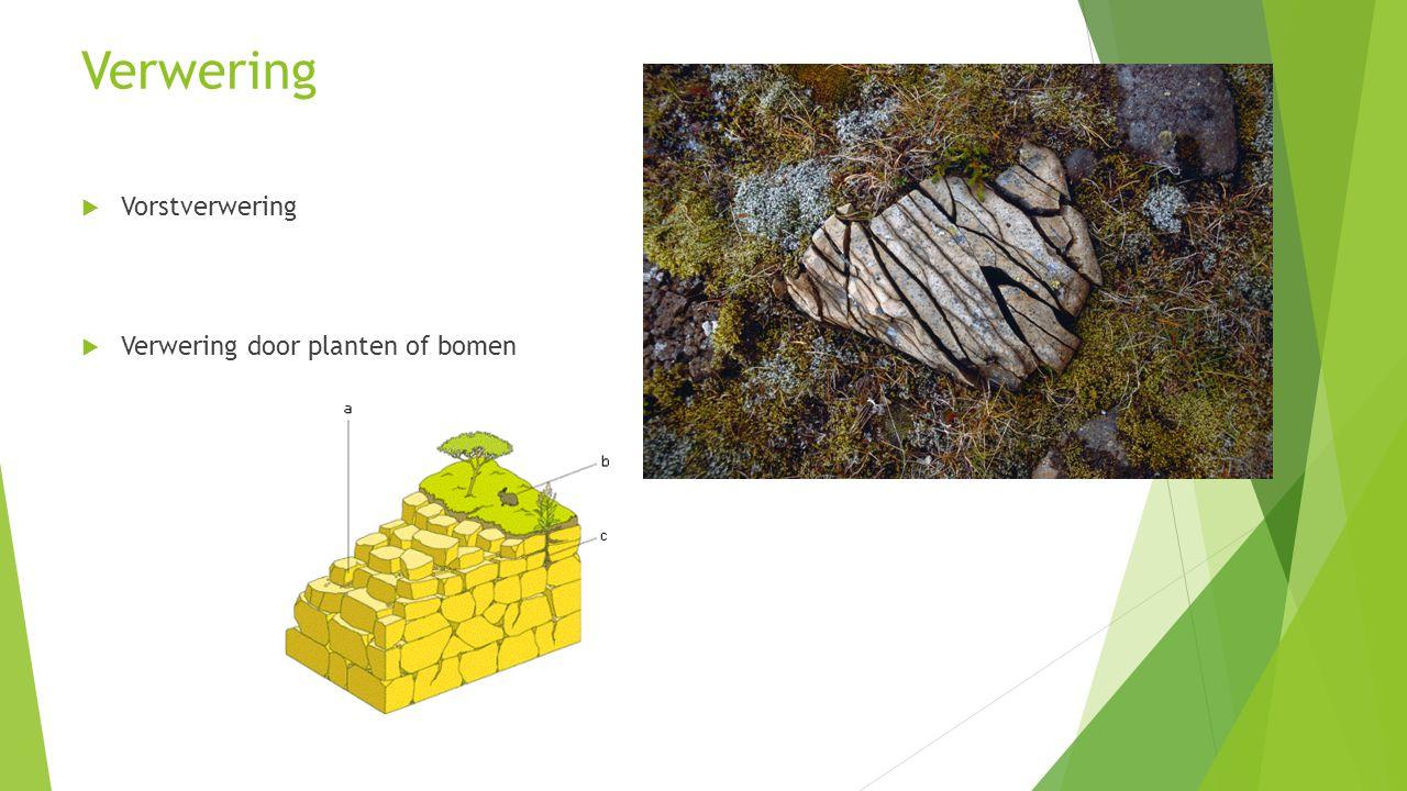 Verwering  Vorstverwering  Verwering door planten of bomen