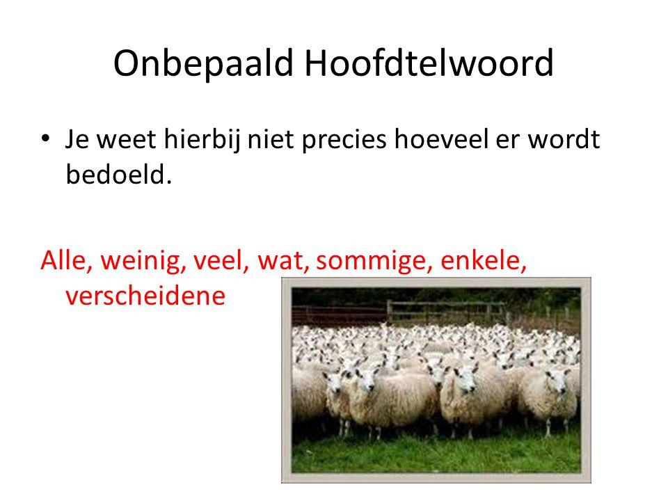 Onbepaald Hoofdtelwoord Je weet hierbij niet precies hoeveel er wordt bedoeld.