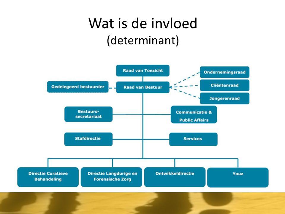 Wat is de invloed (determinant)